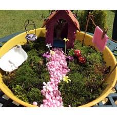 Faeiry Garden 1